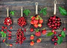 Bacche rosse in vasi di rame su fondo di legno rustico Concetto dei regali e del raccolto di estate Collage delle bacche differen immagini stock