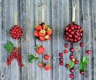 Bacche rosse in vasi di rame su fondo di legno stagionato rustico Concetto dei regali e del raccolto di estate Collage delle bacc immagine stock libera da diritti