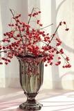 Bacche rosse in vaso di vetro fotografia stock libera da diritti