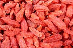 Bacche secche di Goji Immagine Stock