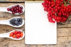 Bacche selvatiche fresche con il taccuino di carta sulla tavola di legno Fotografia Stock Libera da Diritti