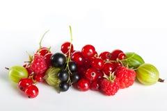 Bacche succose mature Preparato della frutta Uva passa e lamponi delle uva spina su un fondo bianco Fotografia Stock