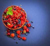 Bacche sugose fresche Fotografia Stock