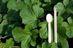 Bacchette verdi e cucchiai di legno Fotografia Stock