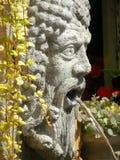 Bacchus głowa jako fontain obraz royalty free