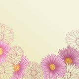 bacground τα συρμένα floral λουλούδι&alph απεικόνιση αποθεμάτων