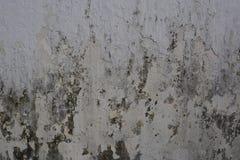 Bacground blanco y negro del grunge Fotos de archivo