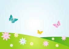 Bacground da flor do verão ilustração do vetor