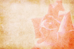 Bacground del papel del vintage de la flor libre illustration