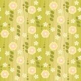 bacground floral πράσινος Στοκ Φωτογραφία
