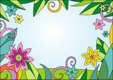 Bacground floral do verão ilustração royalty free