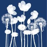 Bacground floreale con il fiore Fotografie Stock