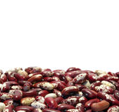 Bacground from kidney beans Stock Photo