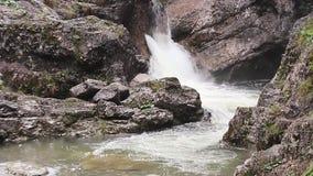 Bach de la garganta del río de la naturaleza de la cascada almacen de video