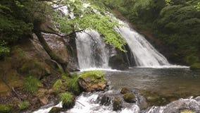 Bach, der vom Wasserfall fließt stock video footage