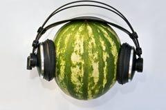 bach DJ ο πράσινος Johann Sebastian στοκ φωτογραφία με δικαίωμα ελεύθερης χρήσης