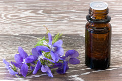 Bach flower remedies of violets Stock Photo