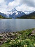 Bachalpsee al principio, Suiza Fotos de archivo