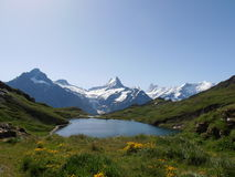 Bachalpsee Zwitserland Royalty-vrije Stock Fotografie