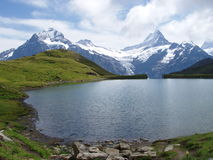 Bachalpsee Zwitserland Stock Foto