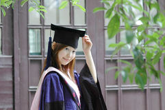 Bachelor of china Stock Image