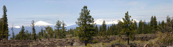 Bachelor Mountain. & 3 Sisters Mountains, wilderness, nearBendOregon Royalty Free Stock Image