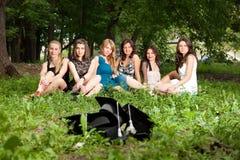 Bachelor's graduates celebrate Royalty Free Stock Photo