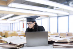 Bachelor studying in library Stock Photos