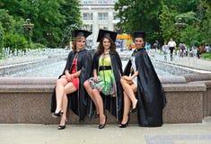 Bachelors Stock Photos