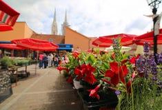 Bachground de la flor de la catedral borrosa de Zagreb del croata Foto de archivo