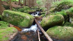 Bachlauf durch Felsen. Wanderung im Harz Royalty Free Stock Image