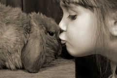 Baci del coniglietto Immagine Stock