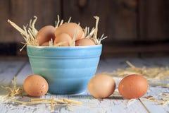 Bacia azul 2 dos ovos de Brown imagens de stock royalty free