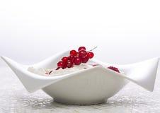 Bacia branca de fruto Imagem de Stock Royalty Free