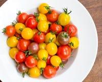 Bacia branca de tomates de cereja coloridos Imagens de Stock