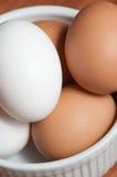 Bacia branca, redonda de ovos brancos e marrons orgânicos Foto de Stock Royalty Free