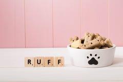 Bacia canino para enchido com os biscoitos Fotos de Stock