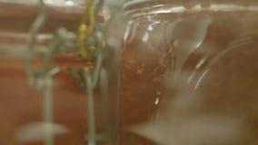 Bacia com caviar vermelho vídeos de arquivo