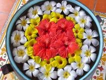 Bacia com flores Foto de Stock Royalty Free