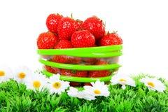 Bacia com morangos frescas imagem de stock royalty free