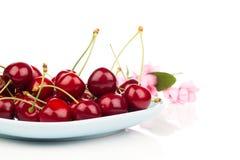Bacia completamente de cerejas Fotos de Stock Royalty Free
