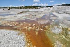 Bacia da porcelana, parque nacional de Yellowstone, EUA fotografia de stock