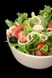 Bacia da salada imagens de stock royalty free