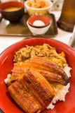 Bacia de arroz da enguia com carne de porco Imagem de Stock