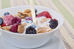 Bacia de cereal Imagens de Stock