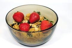 Bacia de cereal Foto de Stock