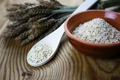 Bacia de cereal da grão de brotos Imagens de Stock
