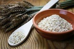 Bacia de cereal da grão de brotos Fotografia de Stock Royalty Free