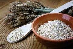 Bacia de cereal da grão de brotos Imagem de Stock Royalty Free