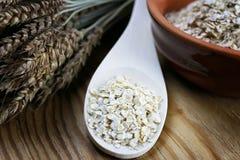 Bacia de cereal da grão de brotos Foto de Stock Royalty Free